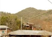 불로리 마을