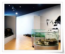 숭덕박물관 이미지